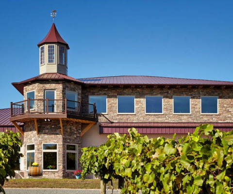 Chisago City, MN – WINEHAVEN CABIN FEVER DAYS –  March 6-7, 2021