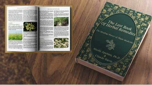 Healing properties of plants