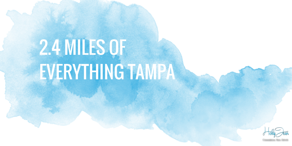 2.4 Miles of Everything Tampa