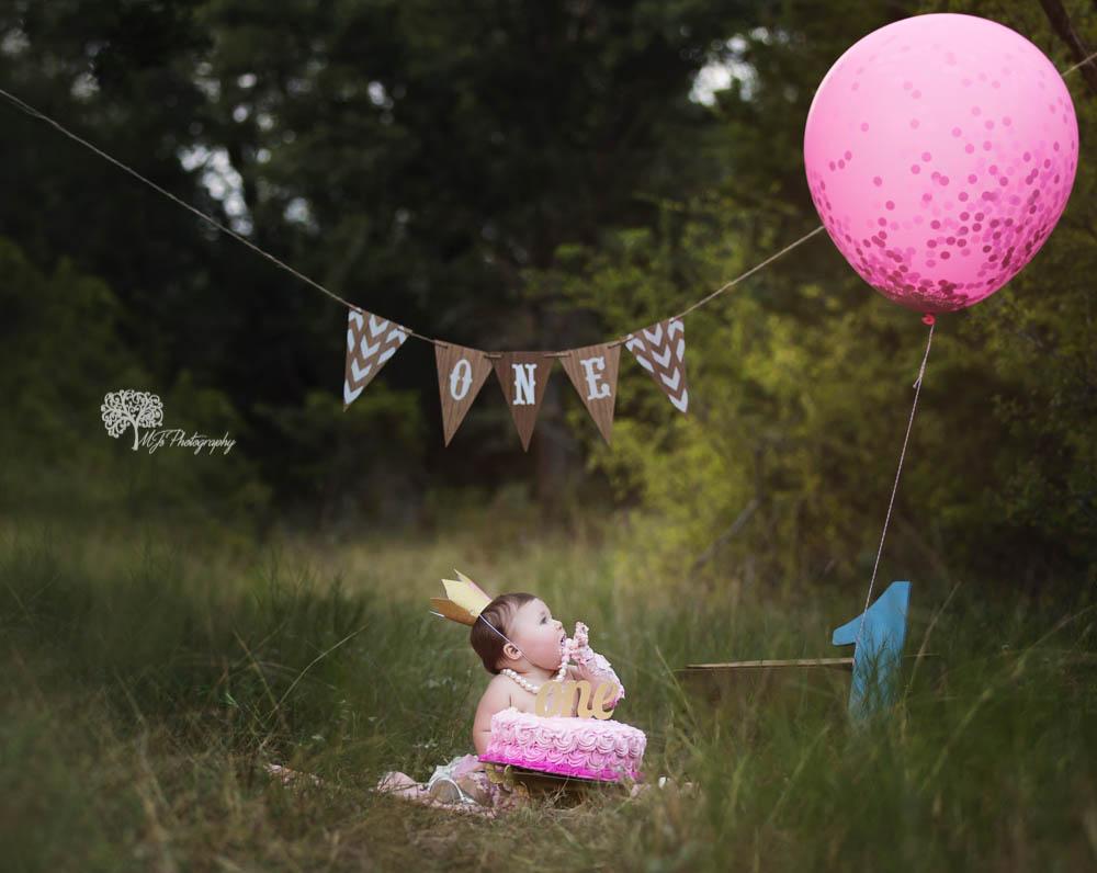 Sugar Land first birthday photographer