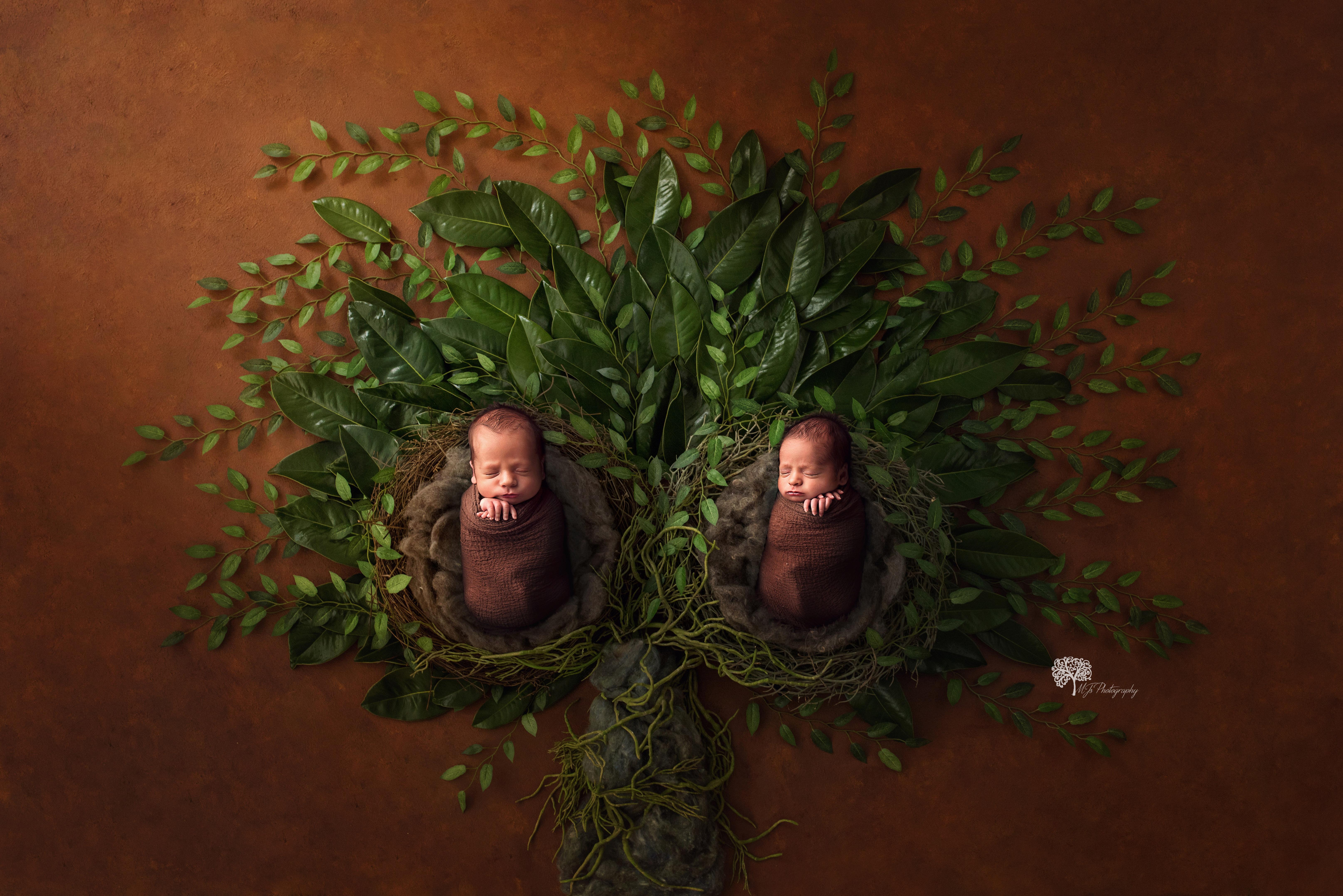 Longview Texas twin newborn photographer