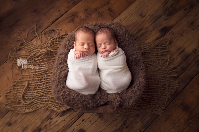 Katy Texas twin newborn photographer