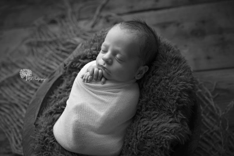 Fort Bend twin newborn photographer
