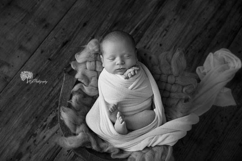 Hallsville newborn photographer