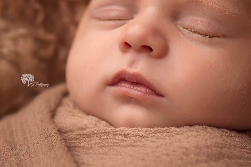 Katy newborn pictures