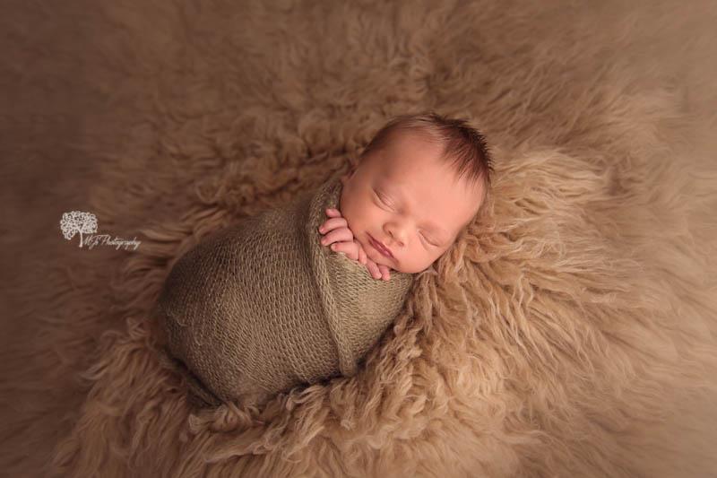 Fulshear newborn photography