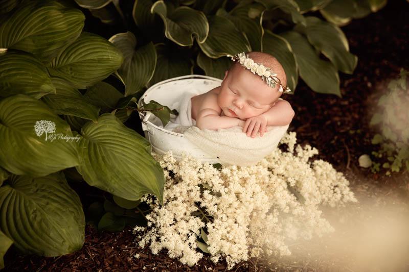 Newborn photography in Memorial