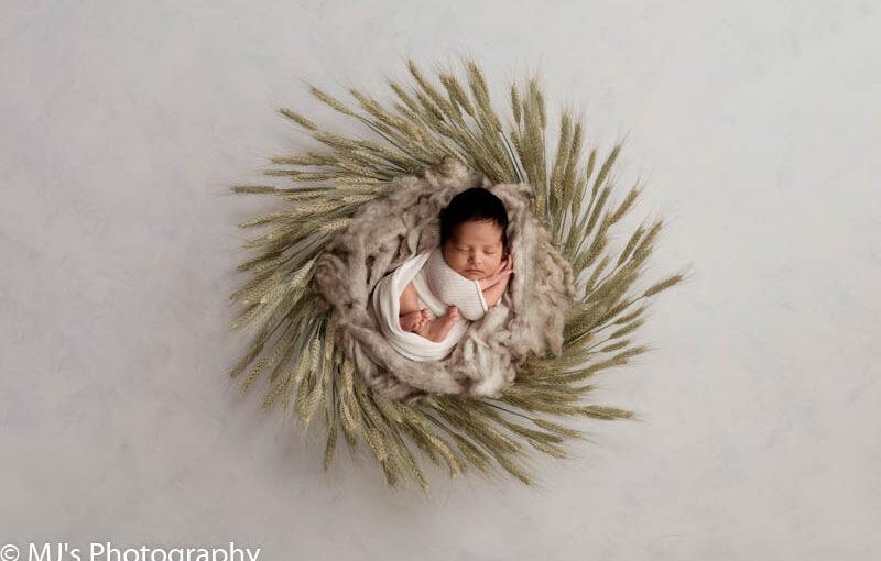 Katy newborn family photographer- MJ's Photography