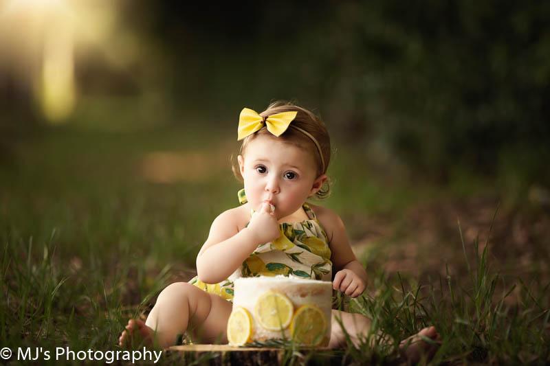 katy family photographer, houston family photographer, houston first birthday photography, cake photographer