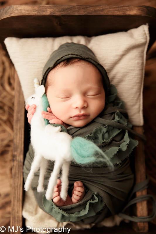 Newborn photographer West University