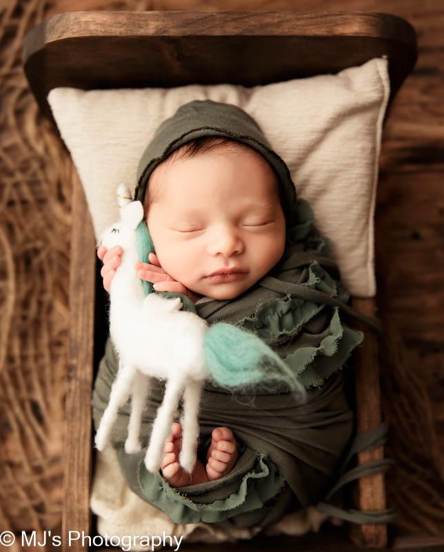 Newborn photographer Memorial