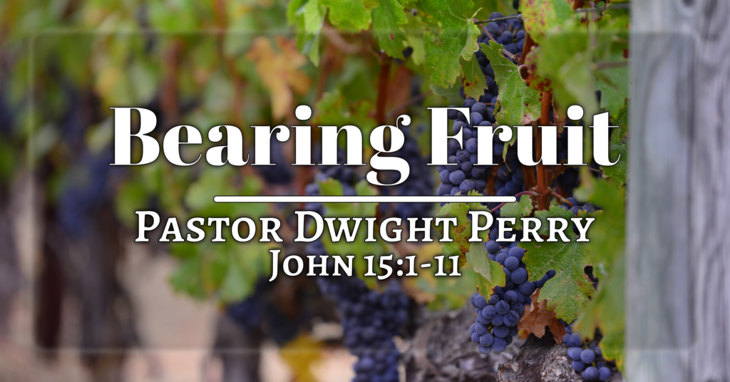 Sermon image for the significance of bearing fruit