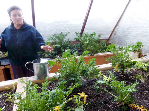Northern Farm Training Institute takes root