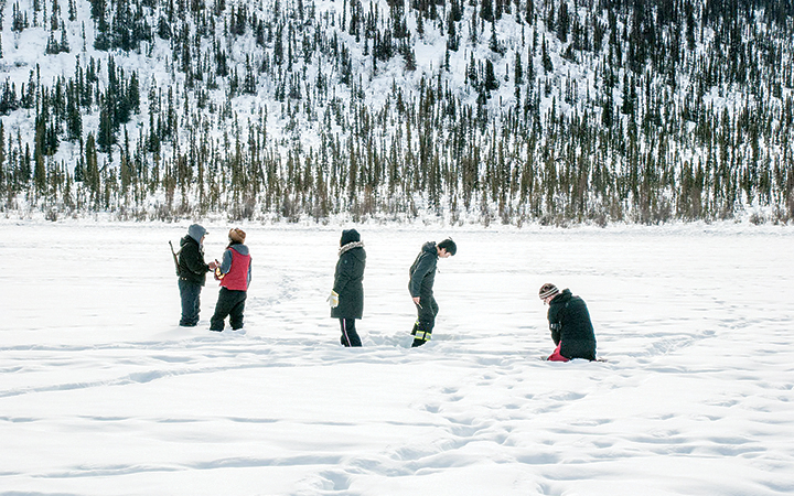 Students follow caribou tracks on Drum Lake in the search for caribou scat over the weekend.