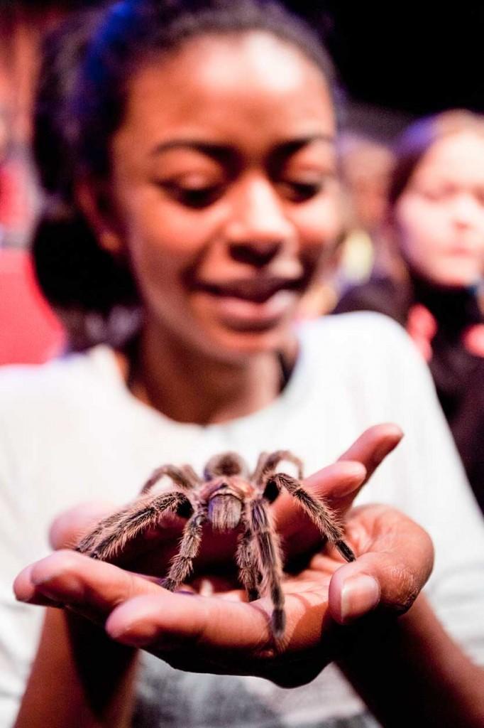 Shenika Robertson channels her Little Miss Muffett with the help of a tarantula.