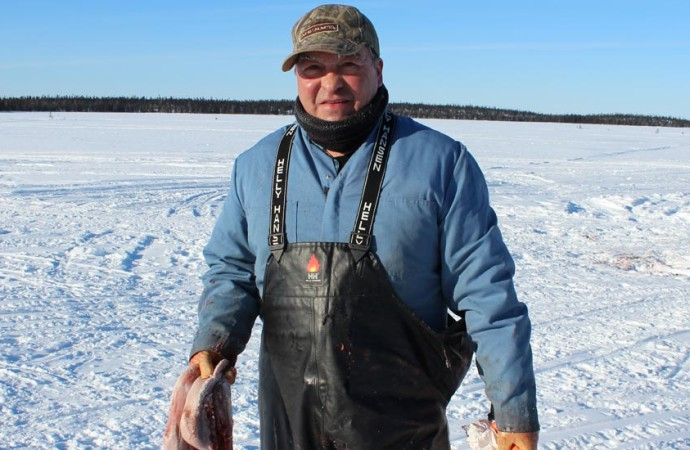 Revoke mining permits on calving grounds, caribou board demands