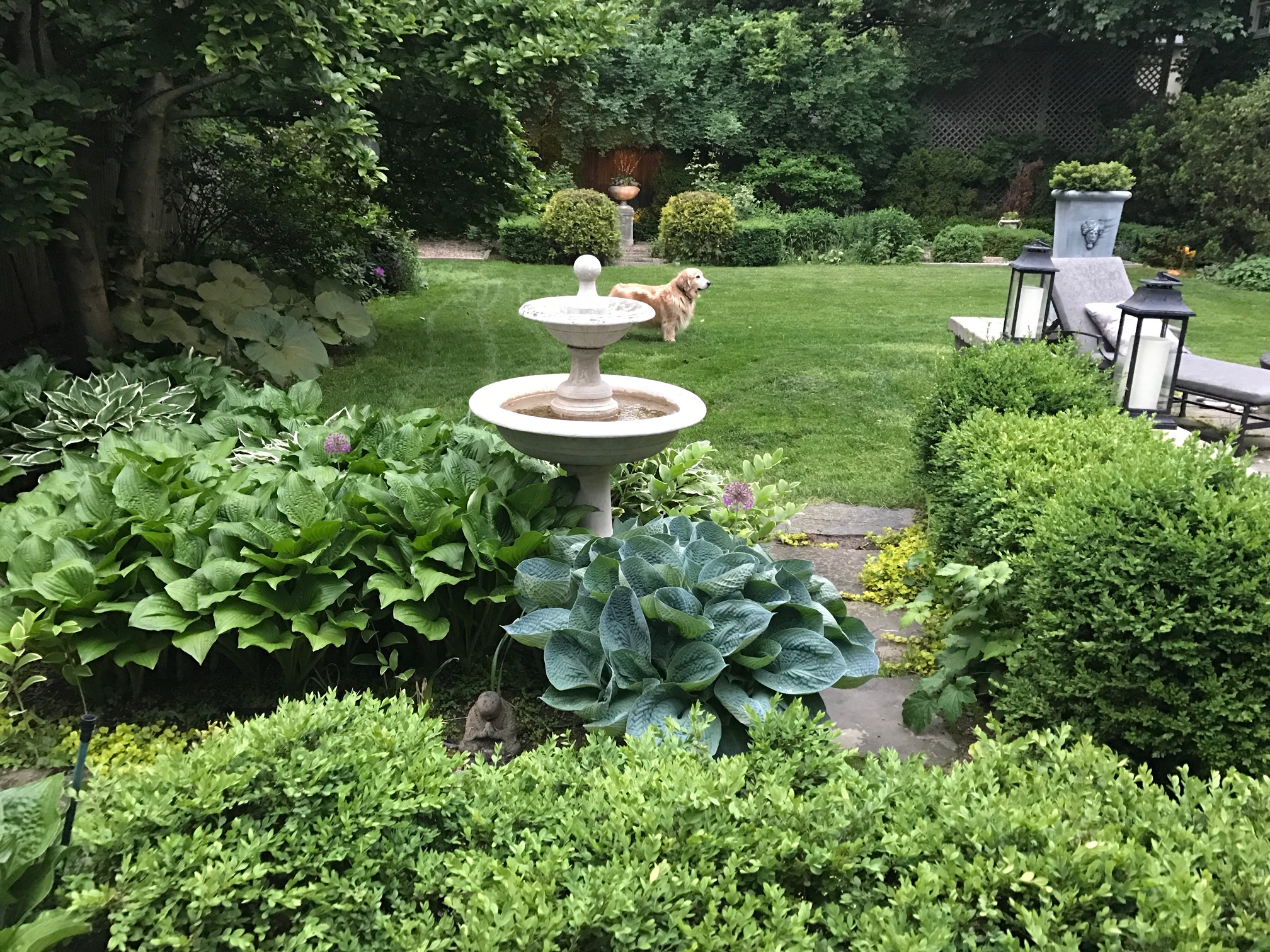 Sprucing Up Your Yard or Garden for Spring