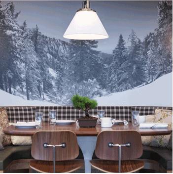 Little Pine Restaurant – Moby's Vegan