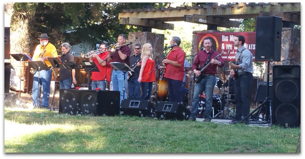 Almaden Music in the Park 2017-7-20