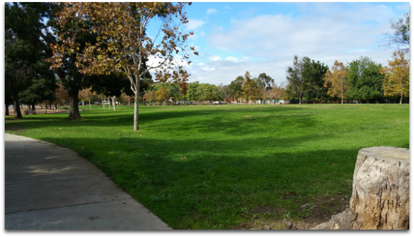 Hogue Park in Cambrian area of San Jose