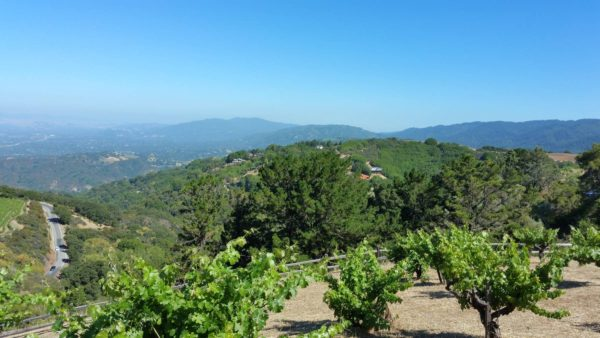 Photo: Ridge Vineyards in Cupertino