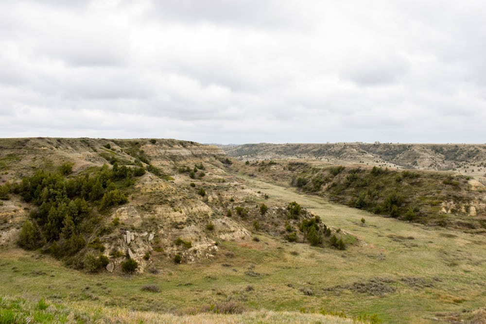 Make the most of your one day visit to Theodore Roosevelt National Park. Teddy Roosevelt National Park is the only national park in North Dakota but its badlands and wildlife is one not to be missed. Check out how to spend one day in Theodore Roosevelt National Park