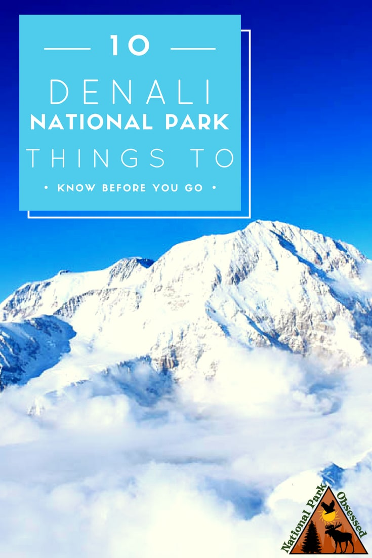 Planning a trip to Denali National Park and Preserve, Alaska? Denali is home to a diverse landscape from the highest mountain in North America to taiga forest. The park has 6 million acres to explore.  Here are 10 things to know before visiting Denali National Park and Preserve.  #denali #denalinationalpark #denalinps #alaska