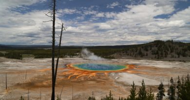 How to Make the Most of 1 Day in Yellowstone National Park – Yellowstone's Grand Loop Highlights Driving Tour