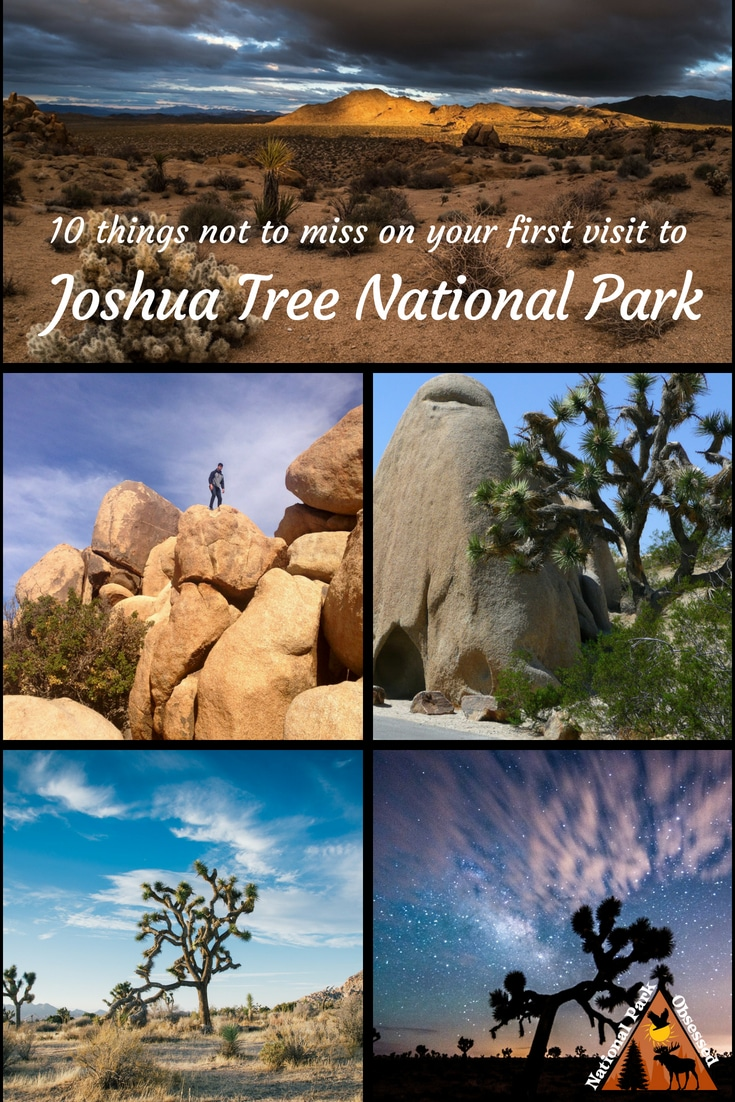 Looking to discover the unique beauty of Joshua Tree? Find out the top 10 things you shouldn\'t miss on your first visit to Joshua Tree National Park. #JoshuaTree #JoshuaTreeNPS #JoshuaTreeNationalPark Joshua Tree national park vacation. Joshua Tree national park   Joshua Tree national park vacation   Joshua Tree national park photography   Joshua Tree national park itinerary   Joshua Tree hikes   Joshua Tree itinerary