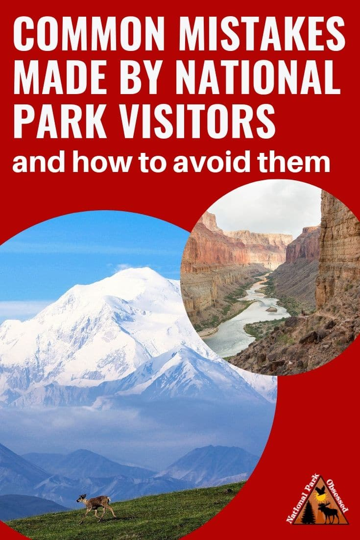 Learn how to avoid making the most common mistakes made by national park visitors. Avoiding these mistakes will increase your enjoyment of the visit. #nationalparkobsessed #findyourpark #nationalparkgreek #nationalparks #nationalpark