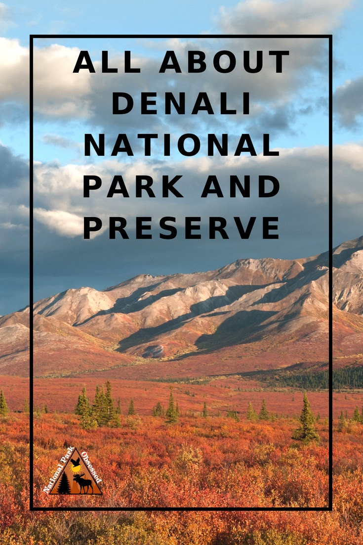 Planning to visit Denali National Park? Don\'t know where to start. Let #NationalParkObsessed help you plan your trip to #Denali with guides, itineraries, things to know and much much more. #alaska #alaskaadventure #findyourpark #nationalparkgeek #nationalparks #nationalpark