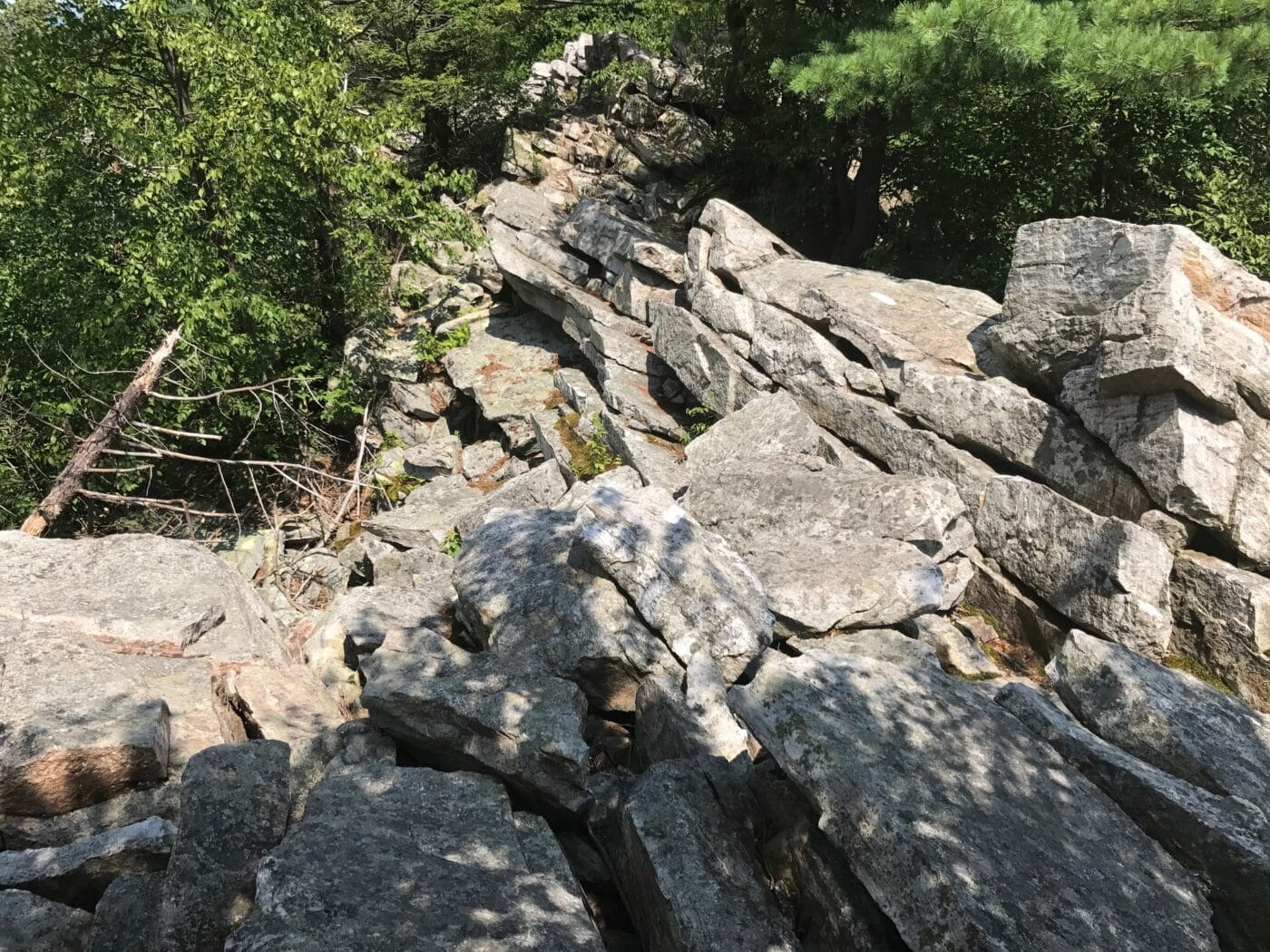 Are you thinking about thru-hiking hiking the Appalachian Trail? Here are 5 things to know before planning an Appalachian Trail thru-hike from Springer Moutain to Katahdin