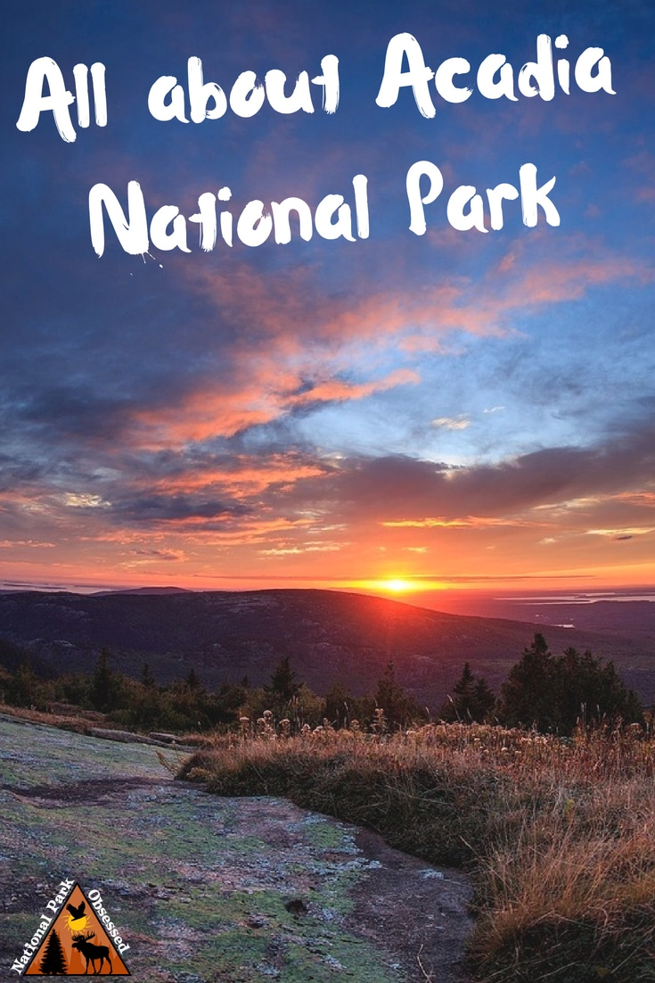 Planning to visit @AcadiaNPS? Don\'t know where to start. Let #NationalParkObsessed help you plan your trip to #Acadia with guides, itineraries, things to know and much much more. #Nationalparkobsessed #nationalpark #findyourpark #nationalparkgeek