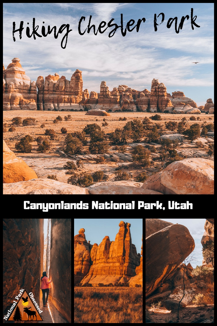 Heading down the Needles District of Canyonlands National Park? Trying to decide which trail to hike? Chesler Park Loop Trail is an excellent trail to check out the sights. #canyonlandsnps #canyonlands #utah #mighty5 #mightfive #utahparks #findyourpark #nationalparkobsessed Canyonlands hiking, hiking in Canyonlands
