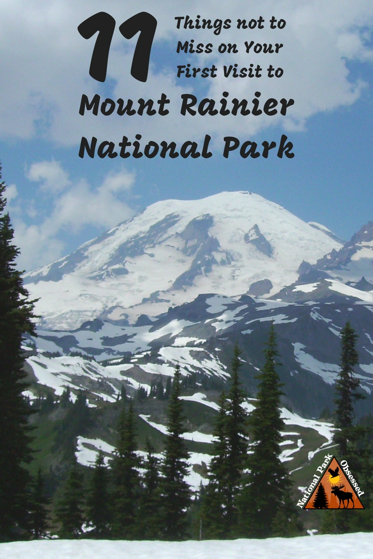 Planning your first visit to Mount Rainier? Here are 11 things not to miss on your first visit to Mount Rainier National Park. Includes waterfalls, wildflowers, hiking, and glaciers. #findyourpark #mountrainier Mount Rainier national park vacation. Mount Rainier national park | Mount Rainier national park vacation | Mount Rainier national park photography | Mount Rainier national park itinerary | Mount Rainier hikes | Mount Rainier itinerary