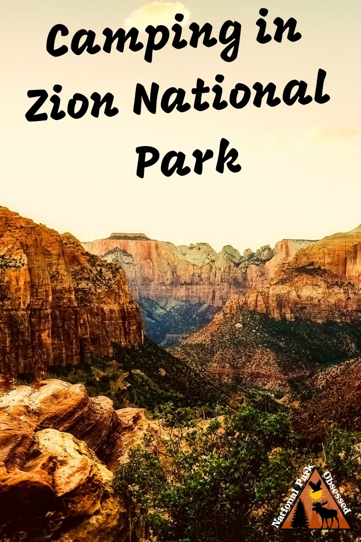 Planning on going camping in Zion National Park? Confused about which campsite to pick. National Park Obsessed\'s Ultimate Guide is here to help you pick the very best campsite. Zion national park vacation. Zion national park | Zion national park vacation | Zion national park photography | Zion national park itinerary | Zion hikes | Zion itinerary