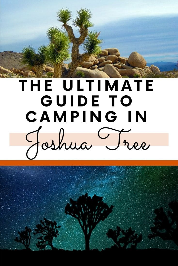 Planning on going camping in Joshua Tree National Park? Confused about which campsite to pick. National Park Obsessed\'s Ultimate Guide is here to help you pick the very best campsite. Joshua Tree Camping, Campgrounds of Joshua Tree, Joshua Tree Campgrounds