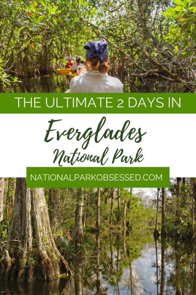 Looking to spend two days in Everglades National Park? Here is everything you need to know to make the most of your weekend in Everglades National Park.  things to do in the everglades / weekend in the everglades / two days in the everglades / #findyourpark #everglades / everglades itinerary