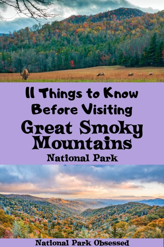 Planning a trip to the Smokies and don't know where to start? Here are 16 things to know before visiting Great Smoky Mountains National Park