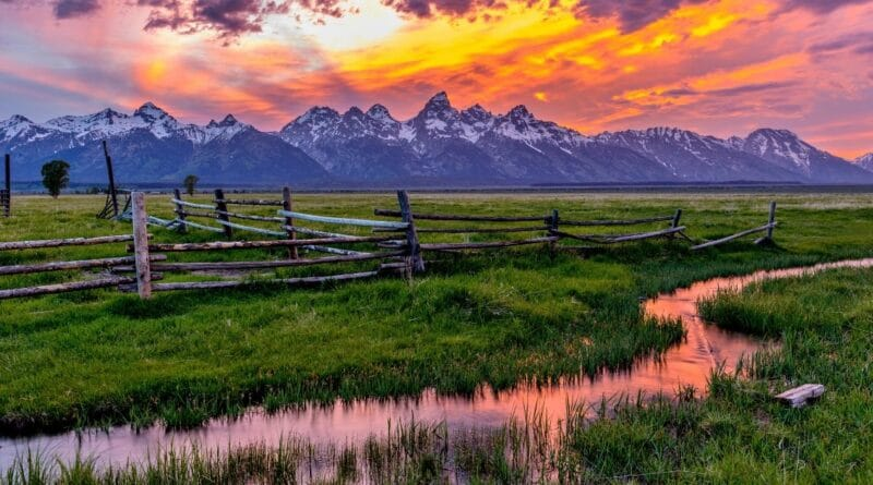23 Best USA National Parks to Visit in the Spring