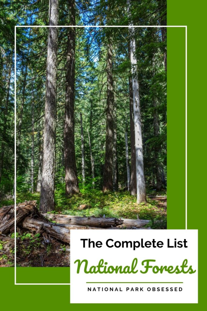 Looking for an updated list of national forests by state? We have a complete list of US National Forests and a map of each forest's location. Find a National Forest near you.  National Forest List #nationalforest