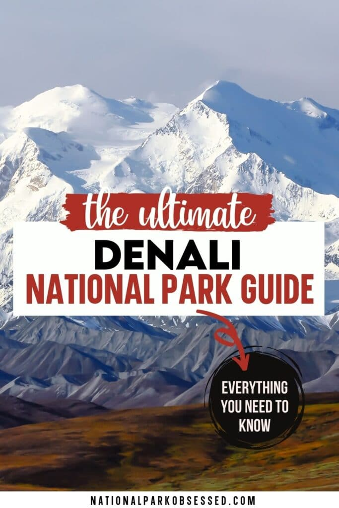 Visiting Denali National Park and Preserve: The complete guide