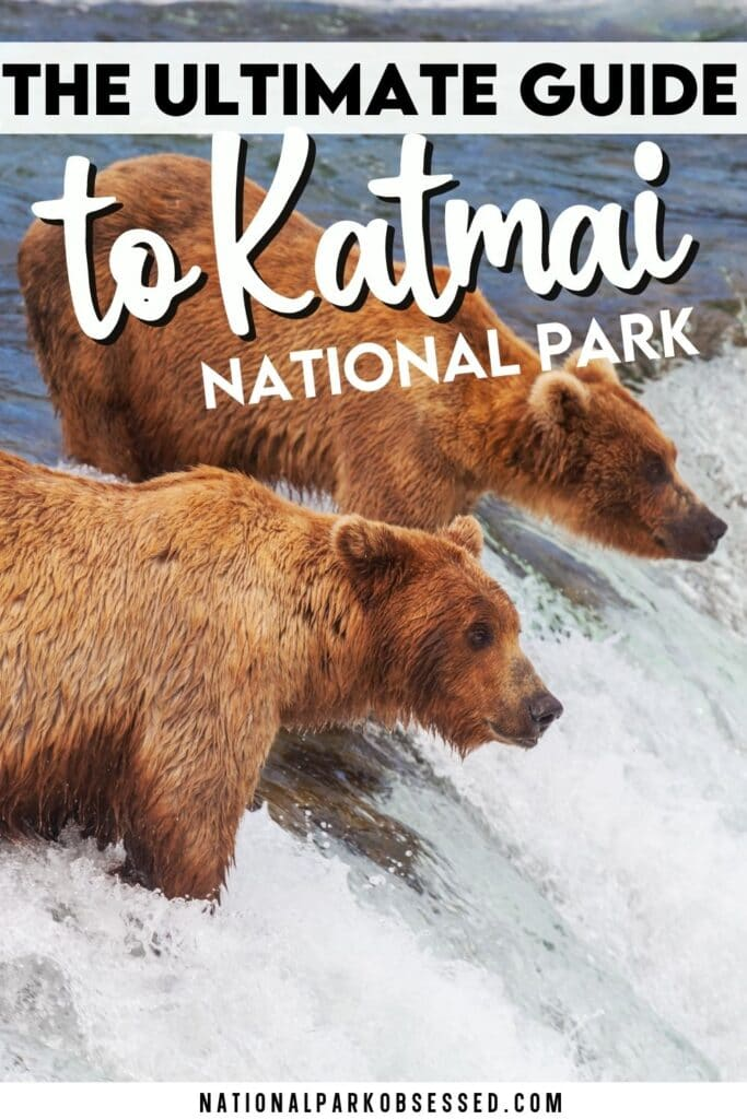 Visiting Katmai National Park and Preserve: The Complete Guide