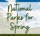 Best National Parks for Spring