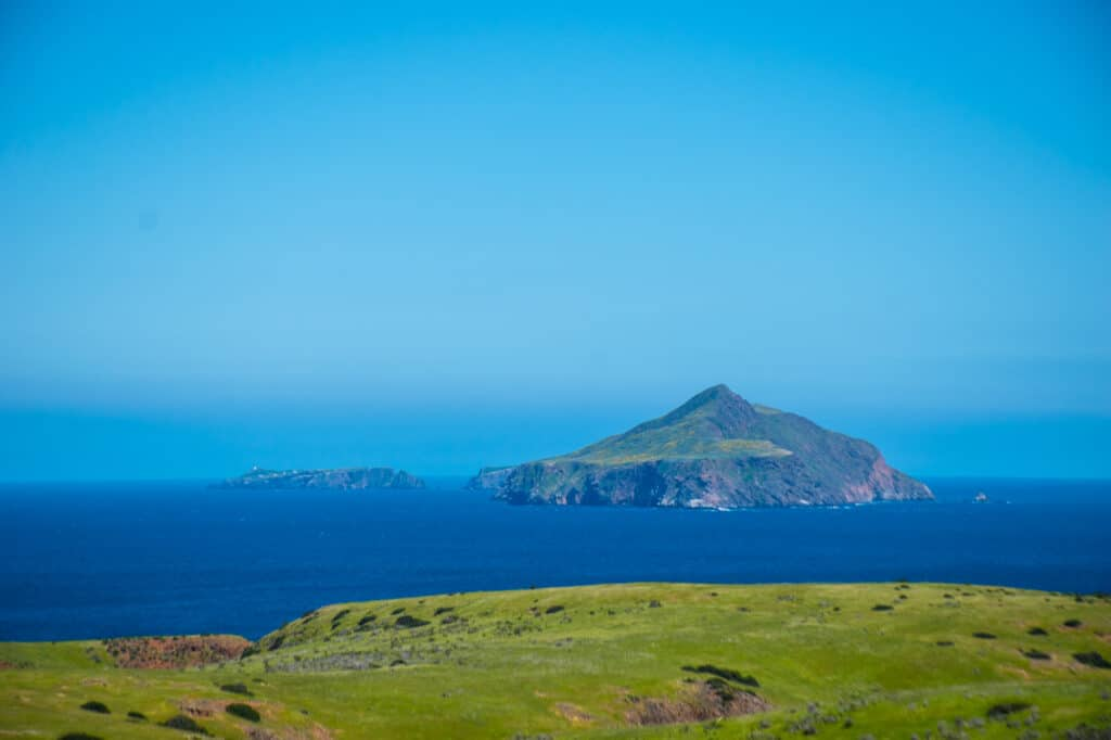 A view of East Anacapa Island and its green and yellow plants.