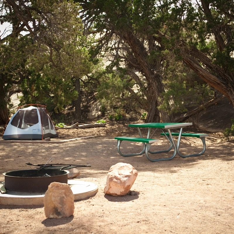 A tent and picnic table in the shade of a Pinion Pine in The Needles Campground in Canyonlands National Park