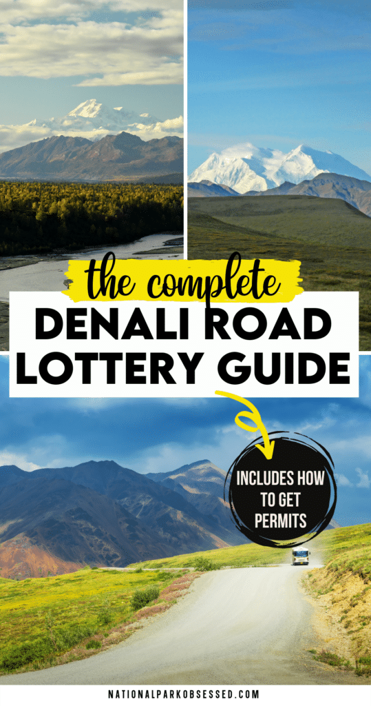 Denali Road Lottery - Everything You Need to Know