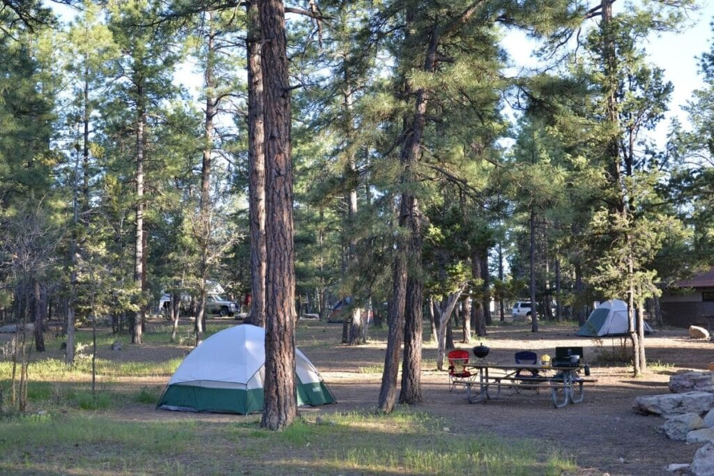 A green tent and picnic table in one of the grand canyon's campgrounds.