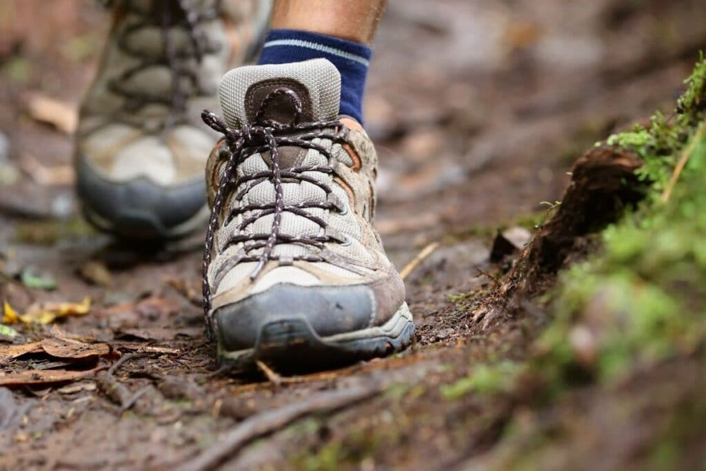 A picture of a hiker's shoes as they hike down the trail.