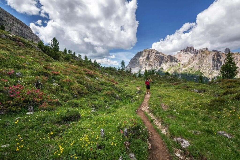 A person with red backpack on a hiking trail in the mountains with lush green landscapes and a rocky background